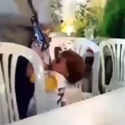 3 Year Old Boy Shoots Man At A Party!