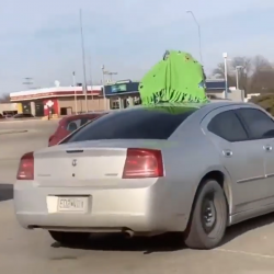 Man Accidentally Leaves His Newborn Child On The Top Of His Car!